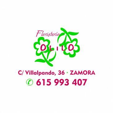 Floristería Olilo